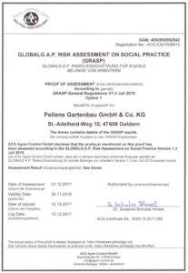 Pellens Hortensien Global G.A.P. Grasp Zertifikat