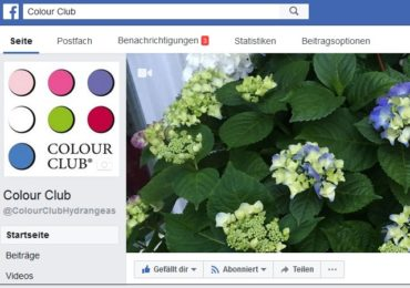 Colour Club auf Facebook