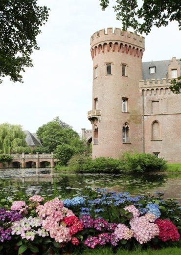 Neuer Hortensiengarten wird eröffnet