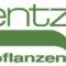 Kientzler Jungpflanzen Logo