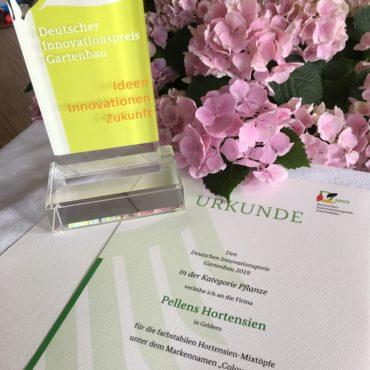 """Innovationspreis Gartenbau für unsere """"Colour Club"""""""