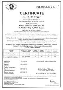Zertifikat Global GAP für Pellens Hortensien 2020