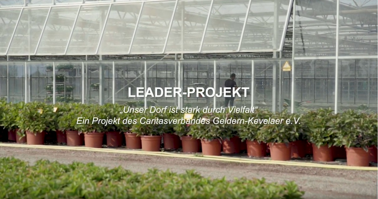 Film Leader-Projekt Integration